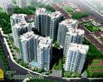 Chung cư Tecco Town Bình Tân